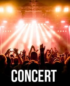 Concert Limo Service Long Island