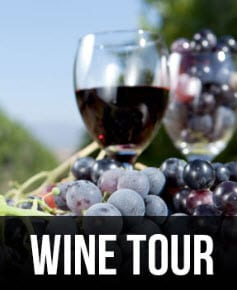 Wine Tour Service Long Island