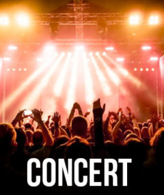 Concert Limo Service