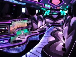 cropped-20170220_Limo2-1
